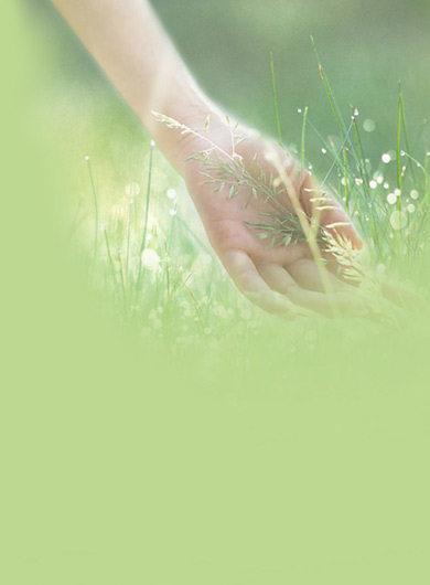 相约梅花山不负春光美之四结香花开漫径香